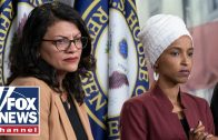 House-Dems-consider-measures-against-Israel-over-Omar-Tlaib-ban